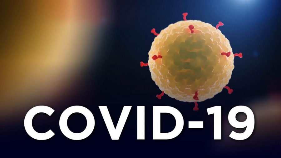 COVID-19 is the official name for this particular strain of Coronavirus (PHOTO FROM https://abc7ny.com/5988128/)
