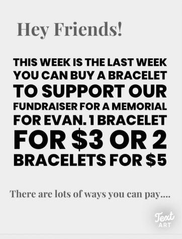 Bracelets for Evan